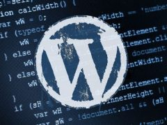 Test Vulnerabilità WordPress