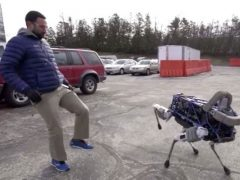 Il Cane Robot di Boston Dynamics