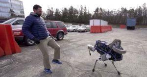 Il Cane Robot di Boston Dynamics
