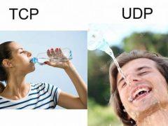 Protocollo TCP e UDP : le Differenze